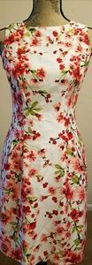 Lauren Ralph Lauren Women Spring Summer Dress